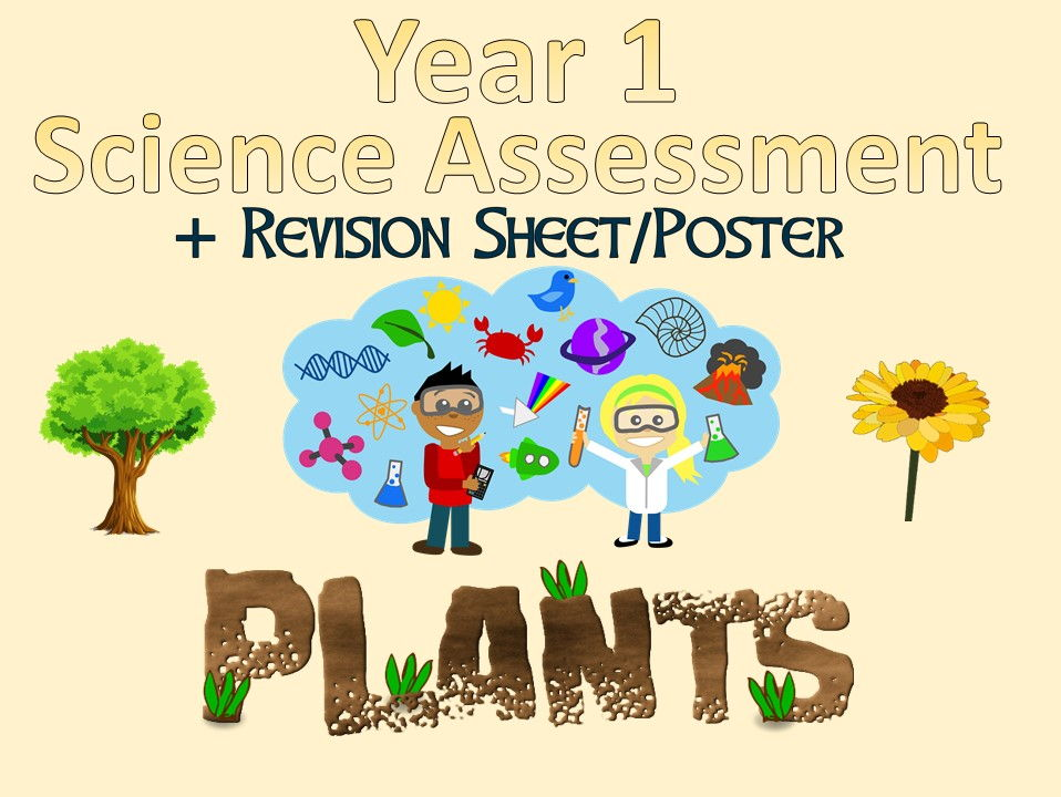 Year 1 Science Assessment: Plants + Revision Sheet/Poster