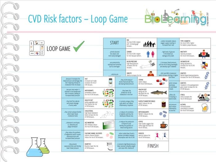 CVD Risk Factors - Loop Game (KS5)