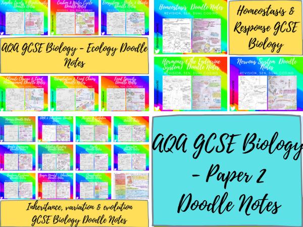 AQA GCSE Biology Paper 2 Doodle Notes