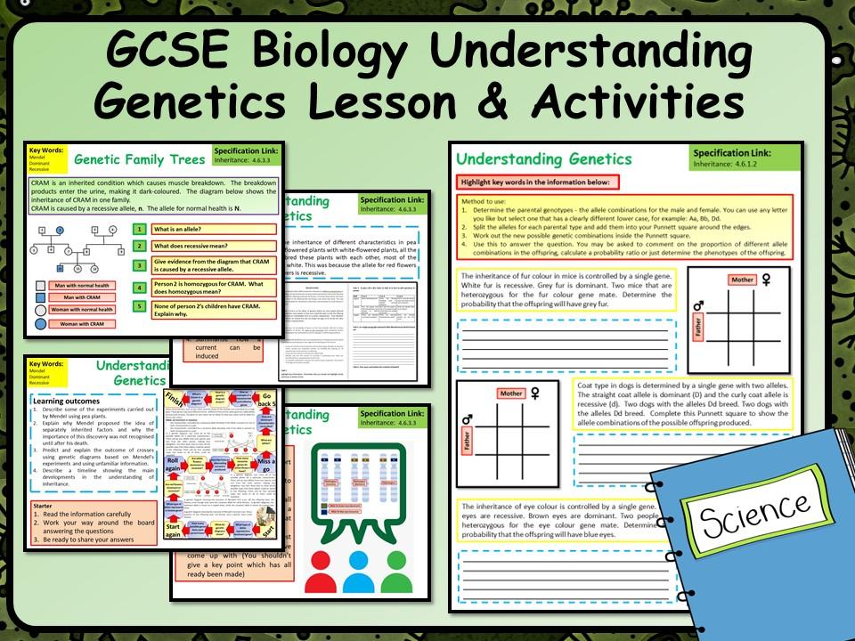 KS4 AQA GCSE Biology (Science) Understanding Genetics Lesson | Teaching Resources