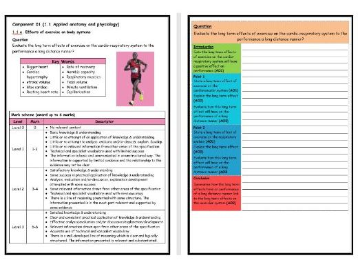 GCSE PE - OCR (9-1)- Structure Strip -Long Term Effects on Cardiovascular System - Extended Question