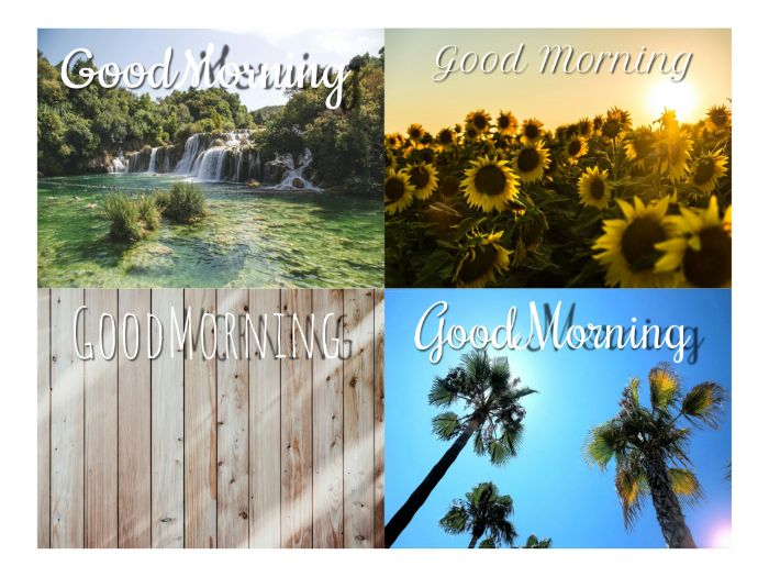 'Good Morning' backgrounds