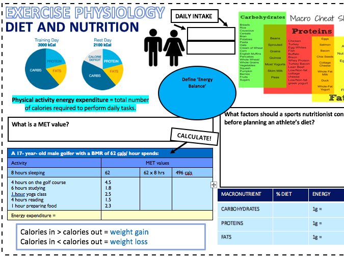 A level OCR PE Diet and Nutrition A3 Worksheet