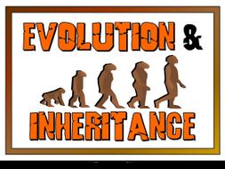 Evolution and Inheritance BUNDLE Y6 Science