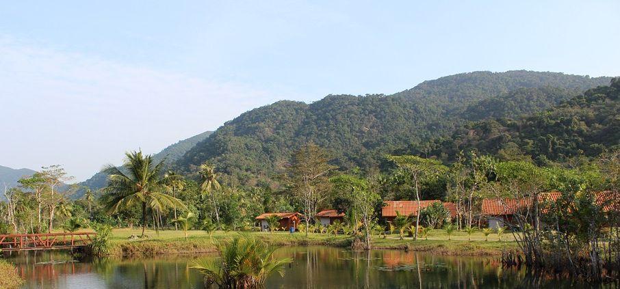 A Level; case study of a rainforest - The Amazon