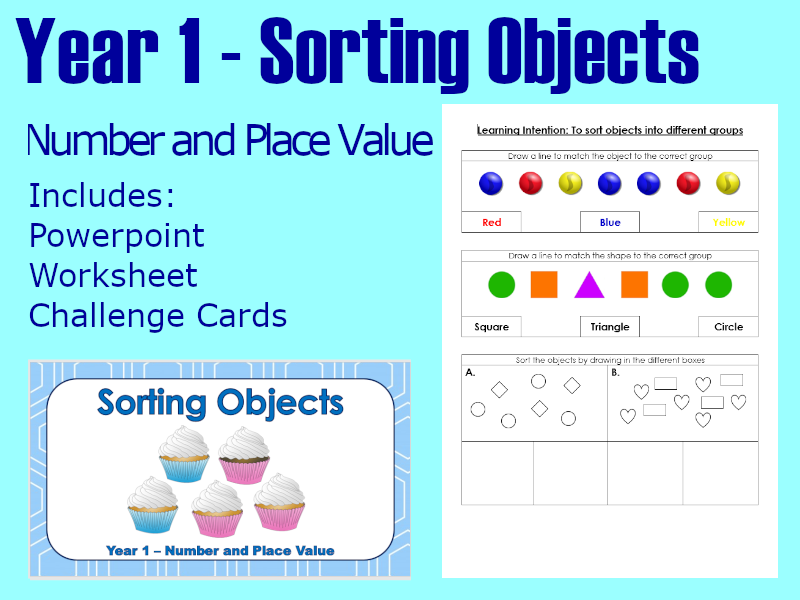 Sorting Objects - Year 1 - Maths Lesson