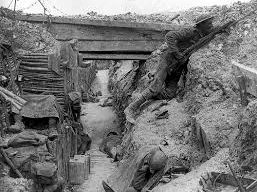 KS3 History. Differentiated extended homework - Conditions in Trenches