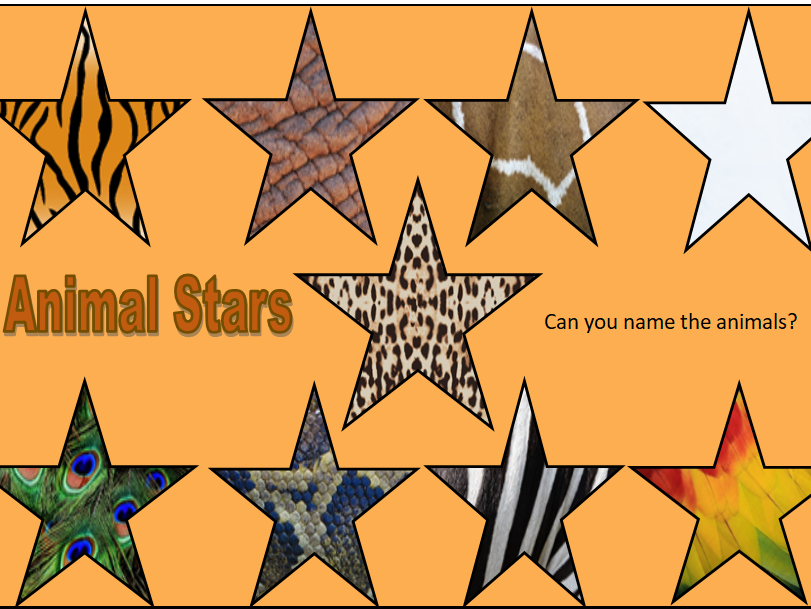 Animal Patterned Stars