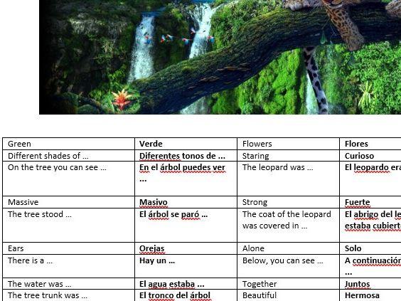 EAL Spanish descriptive writing - Rainforest