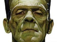 GCSE 9-1 English Literature: Frankenstein Notes GRADE 9 ANALYSIS