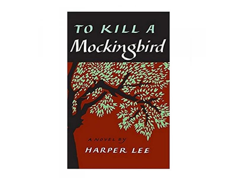 To Kill a Mockingbird Anticipation Guide and KWHL Chart  (BONUS Video!!)