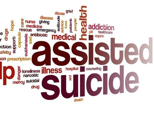 Higher English Discursive Essay Euthanasia / Assisted Dying