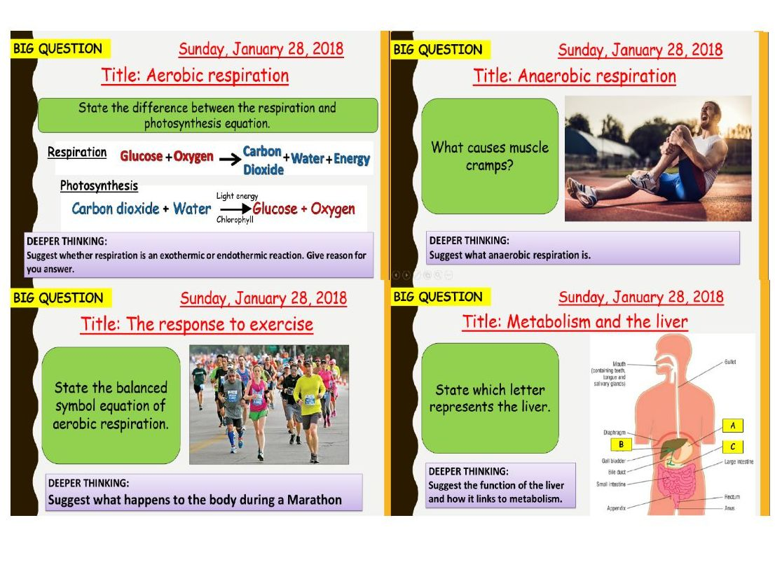 AQA new specification-B9 Respiration-Complete bundle