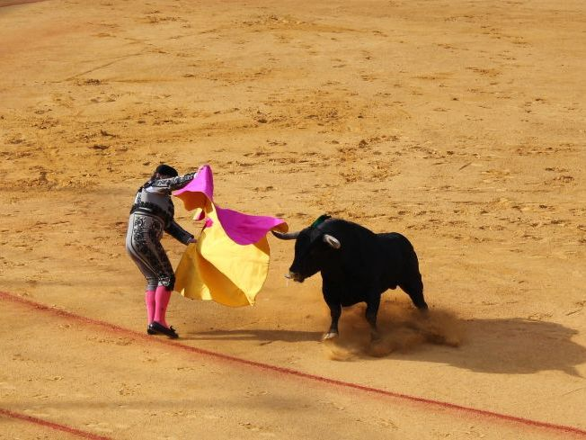 Bullfighting Presentation Leading To A Class Discussion