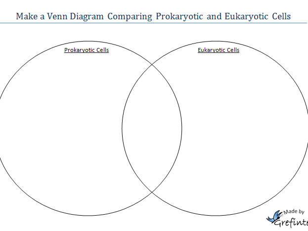 Template for a Venn Diagram Comparing Prokaryotic and Eukaryotic Cells