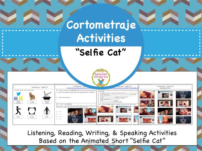 Cortometraje Activities:  Selfie Cat