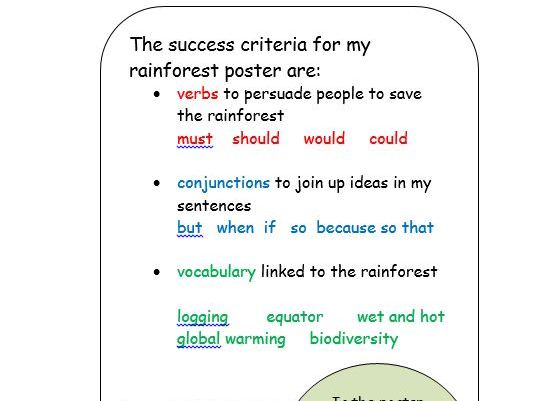 KS2 Rainforest Poster Resources - The Great Kapok Tree