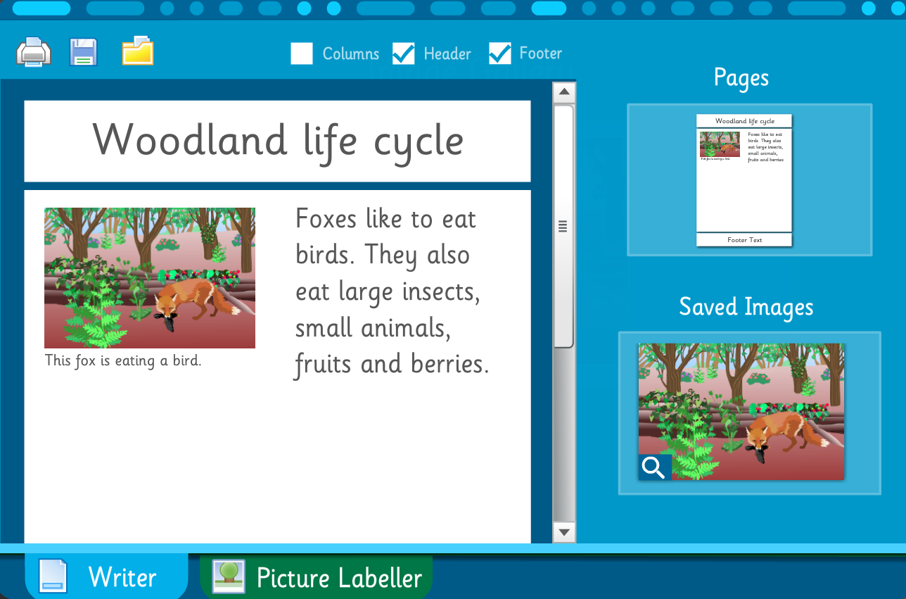 Make Your Own Information Poster: Woodland Life Cycle - Interactive Activity - KS2 Literacy