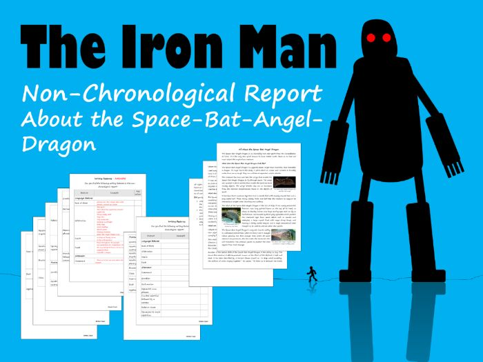 Space-Bat-Angel-Dragon Non-Chronological Report, Feature Identification & Answers