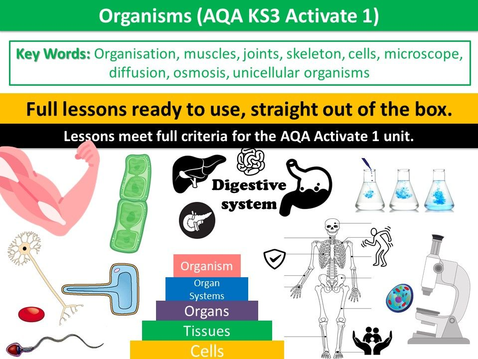 Organisms (AQA KS3 Activate 1