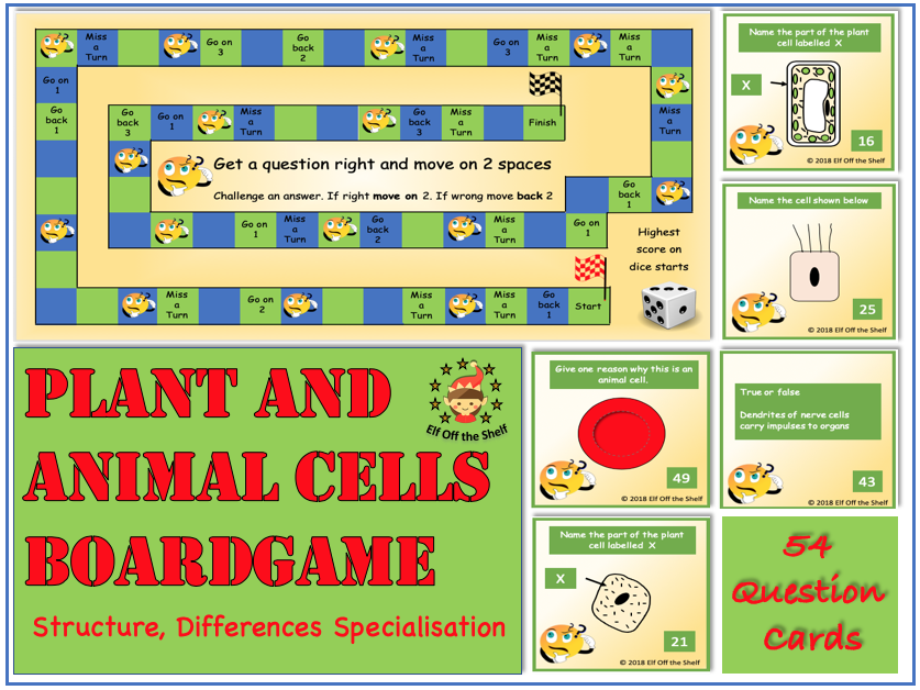 Plant and Animal Cells - Structure, Differences and Specialisation Board Game KS3