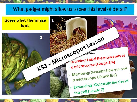 KS3 Microscopes Lesson