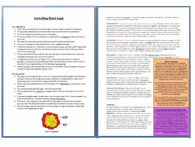 7 page study guide - Diabetes and Blood Glucose Control