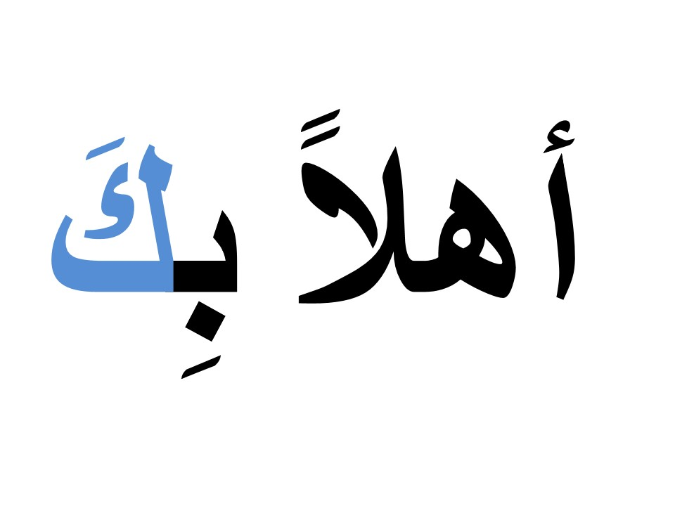 Printable Flash Cards in Arabic (MSA and Levantine)