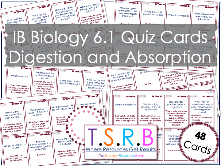 Digestion and Absorption Quiz Cards (IB Bio 6.1)