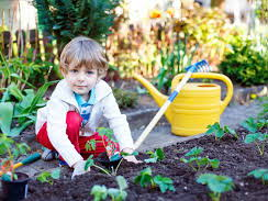 Lesson Plan Nursery (Garden)