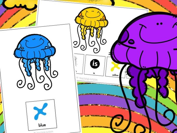 Jellyfish Adapted Books Colour Recognition Color Recognition