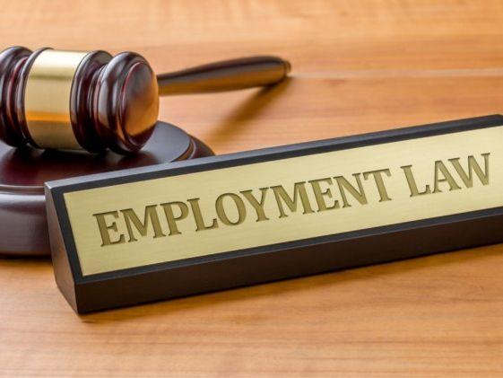 BTEC Level 3 - Unit 14 Aspects of Employment Law Complete Unit