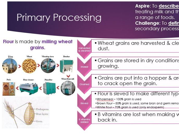 Primary and Secondary Processing Revision