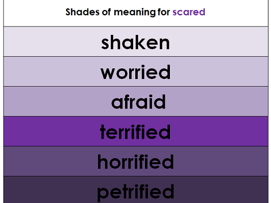 Shades of meaning display and templates