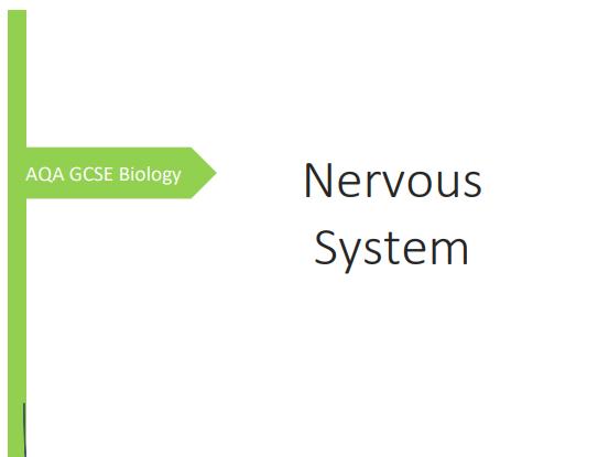 AQA GCSE Biology Nervous System Revision Booklet