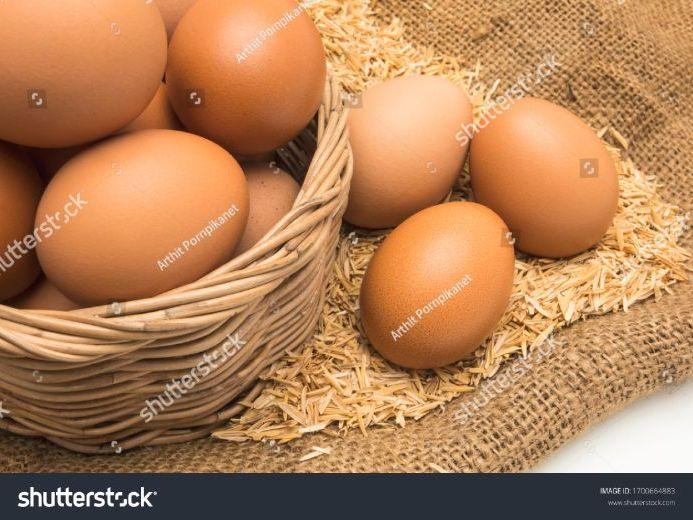 Eggs - Food Commodities