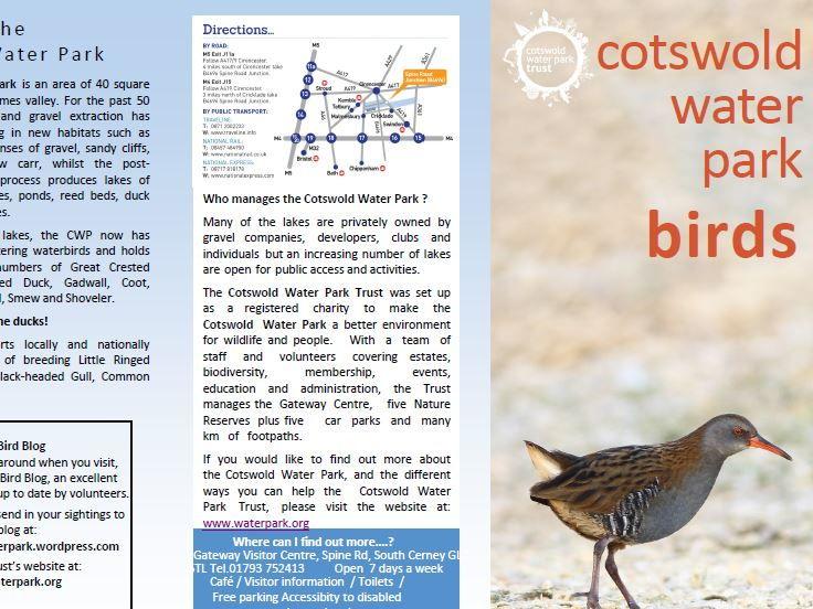 Cotswold Water Park Birds Leaflet  comprehension KS2