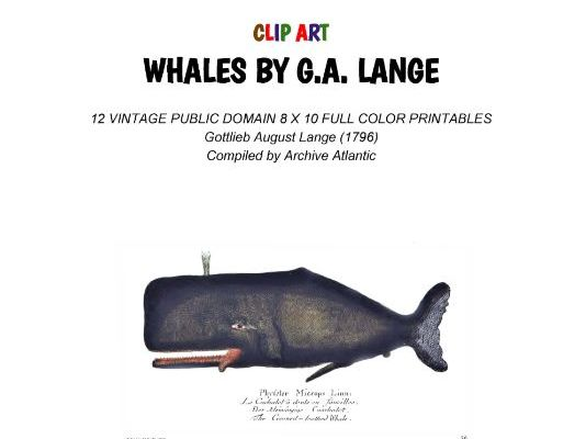 Whales by G.A. Lange - Clip Art