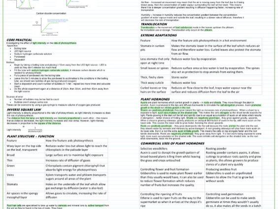 BIOLOGY GCSE TOPIC 6 PLANT STRUCTURE EDEXCEL