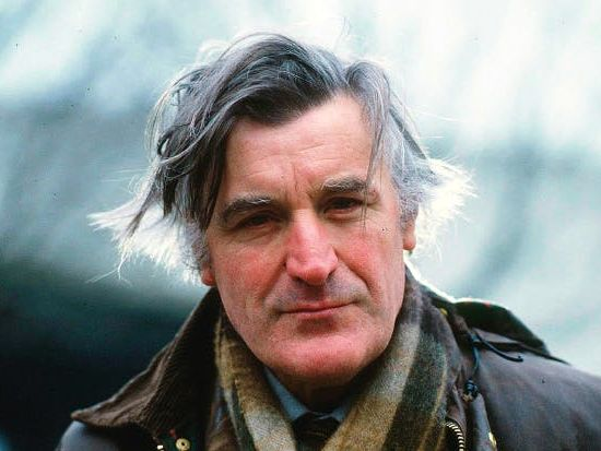 Ted Hughes Exam Style Essay Titles and prompts for specific poems