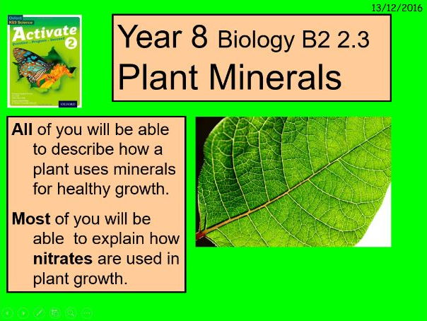 "A digital interpretation of the Year 8 B2 2.3 ""Plant Minerals"" lesson."