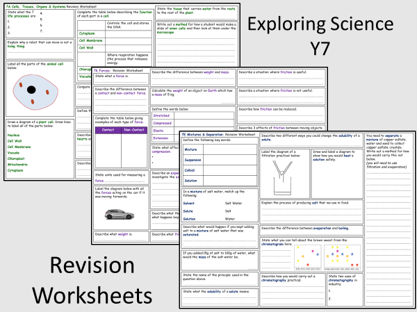 Exploring Science Year 7- Revision Worksheets