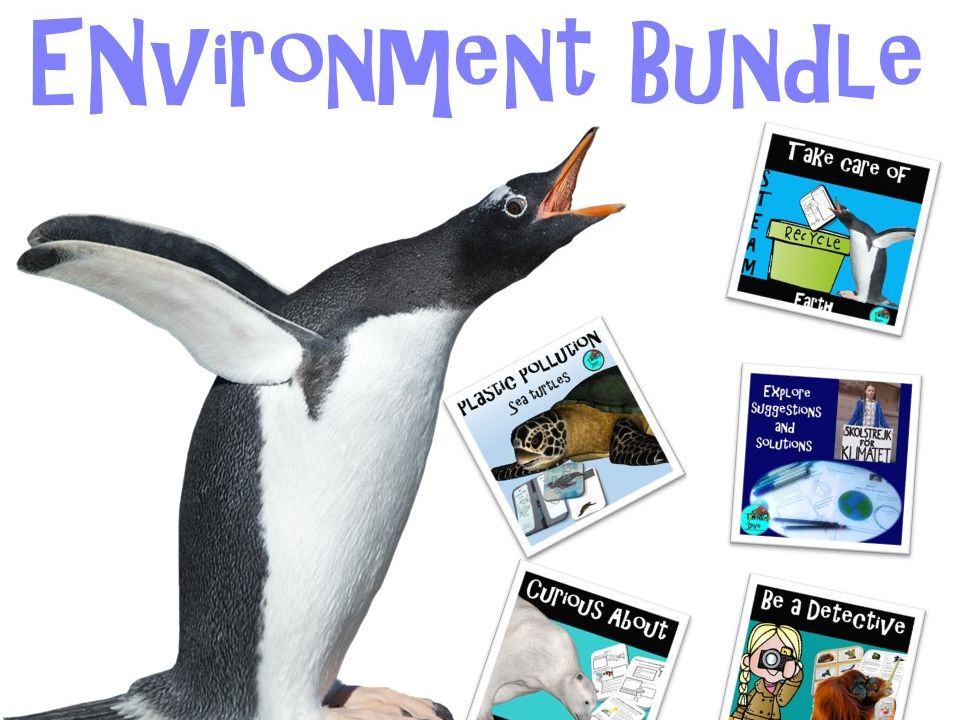 Environment Bundle: Project Based Learning, KS1, NGSS