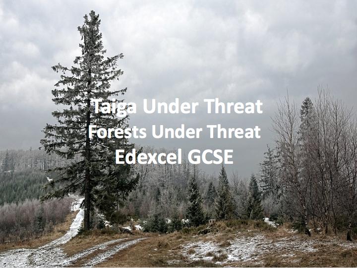 Taiga's Under Threat