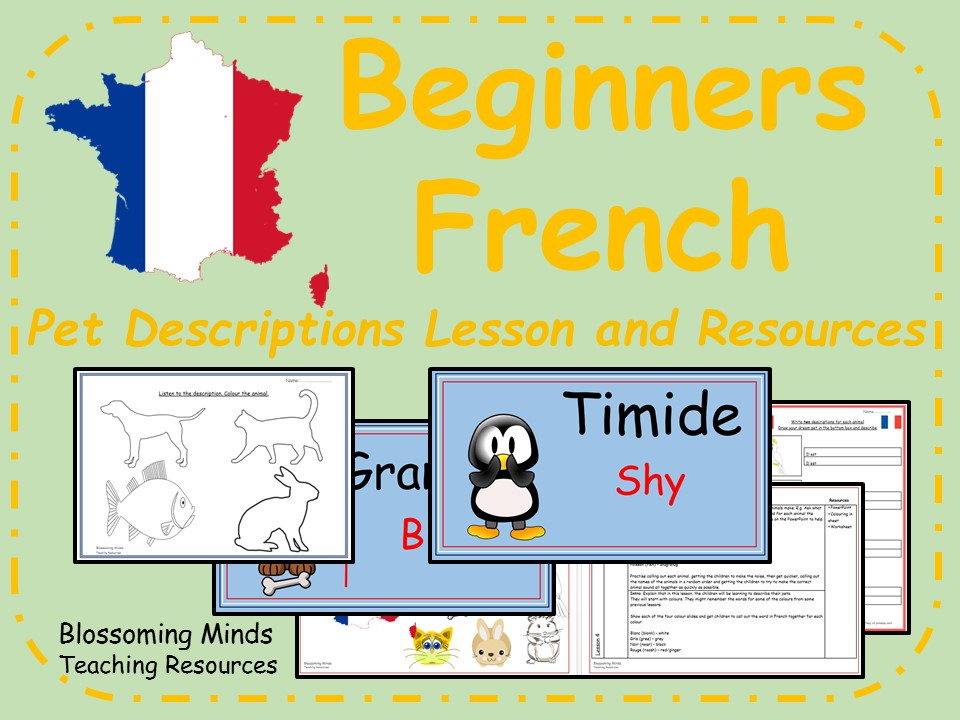 French lesson and resources - Pet descriptions