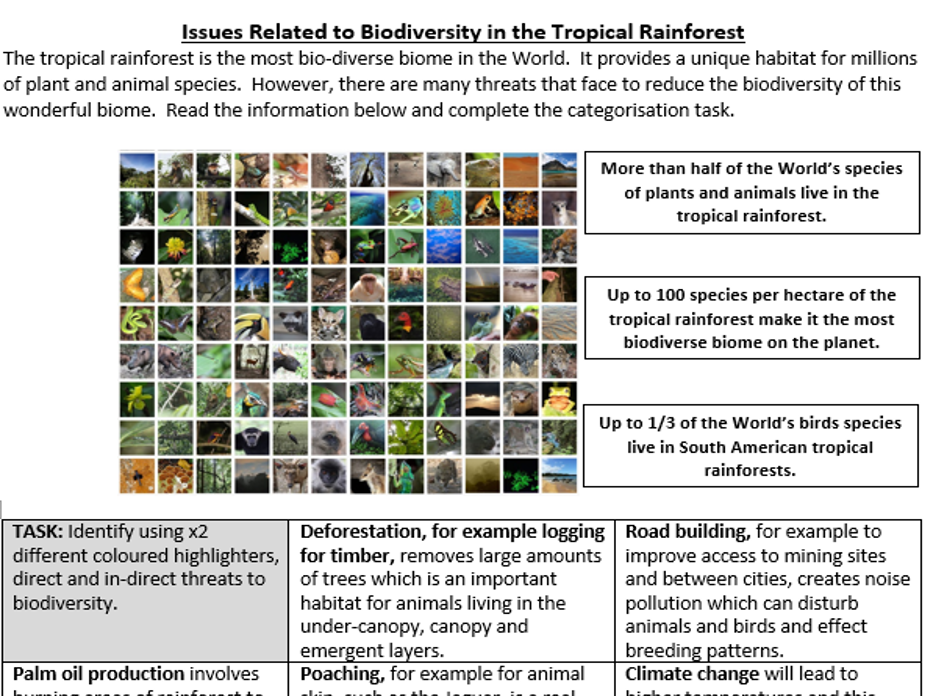 Issues Related to Biodiversity in the Tropical Rainforest - Summary Colour Coding Worksheet