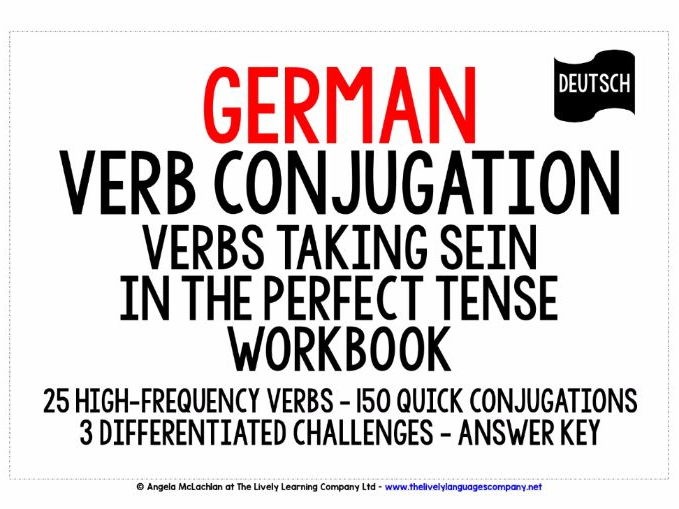 GERMAN VERBS SEIN IN THE PERFECT TENSE WORKBOOK
