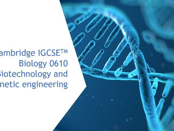 Cambridge IGCSE Biology 0610, 20 Biotechnology and genetic engineering