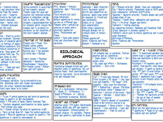 A Level Psychology  Completed Mindmaps X5