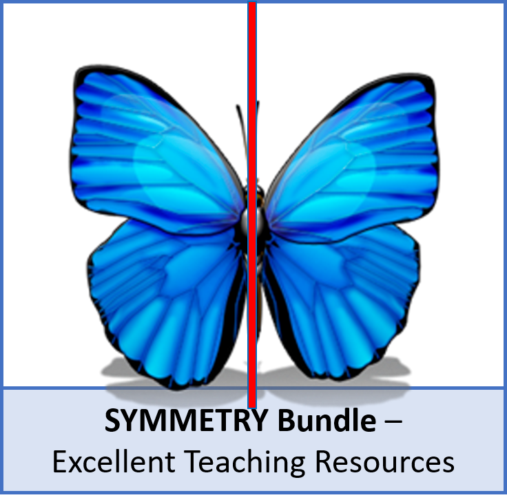 Geometry: Symmetry Bundle (lines and rotational) - perfect for KS3